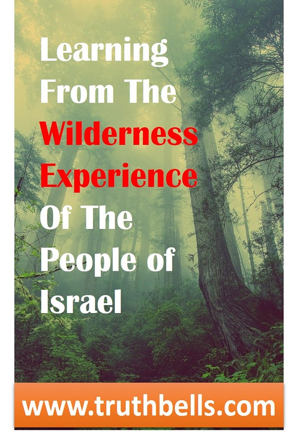 wilderness-experience-bible